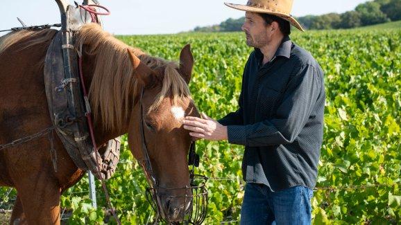 Rodolphe et son cheval